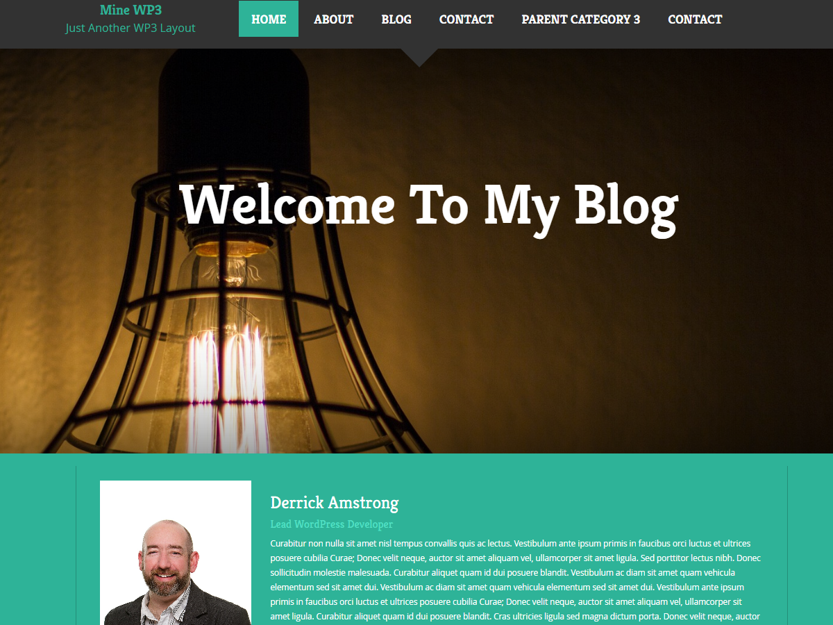 Mine WP3 Blog WordPress Responsive Bootstrap Theme