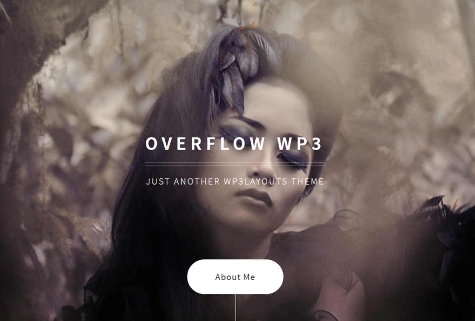 Overflow WP3 Responsive Simple Photography Portfolio WordPress Theme