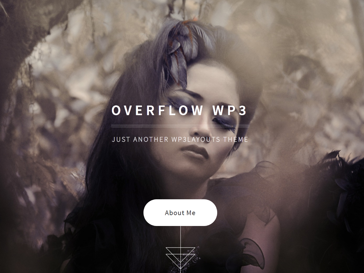 Overflow WP3 Responsive Simple Portfolio, Photography WordPress Theme